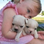 Girl Hugging Puppies