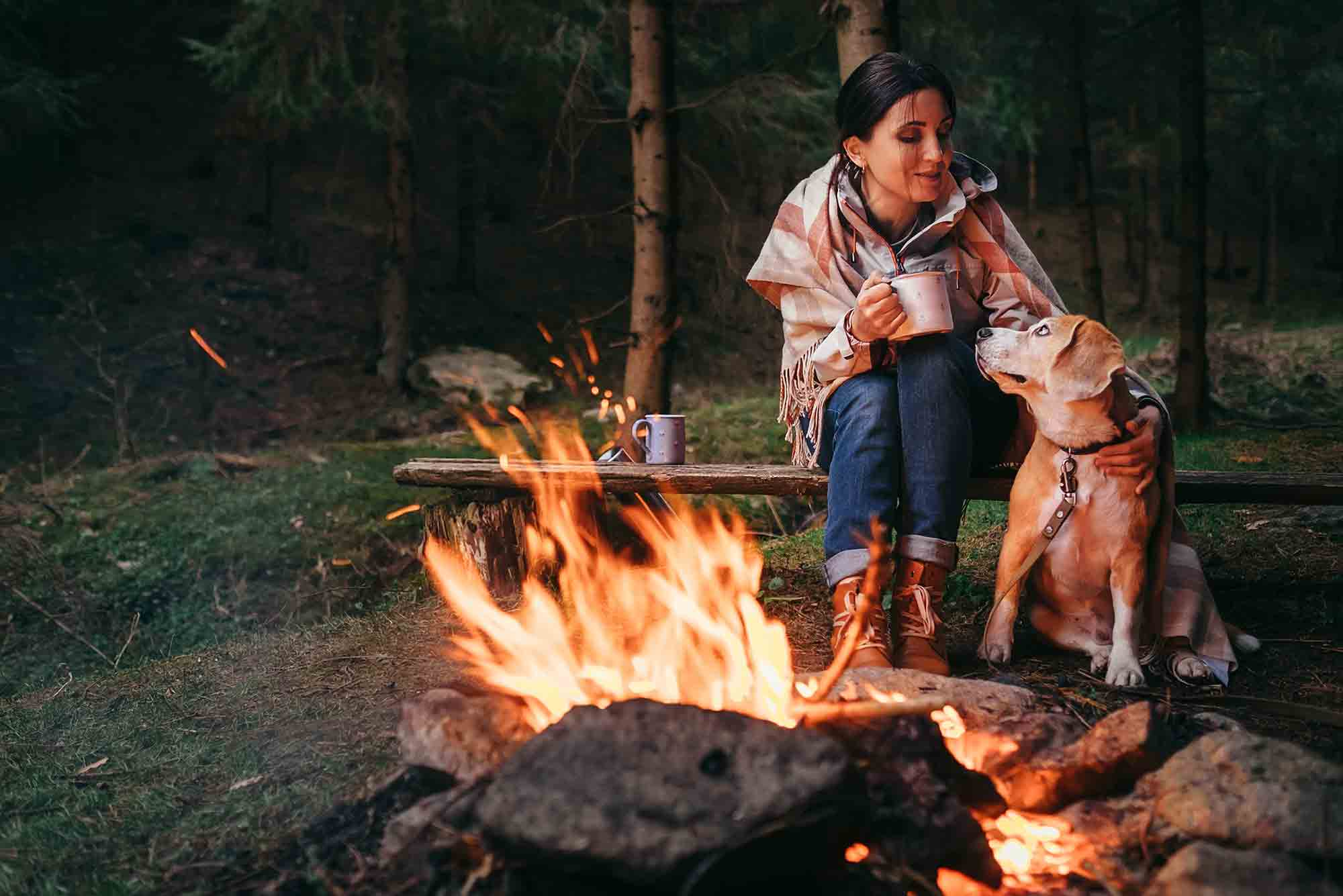 Camping outdoors with your dog is a great way to bond with pets